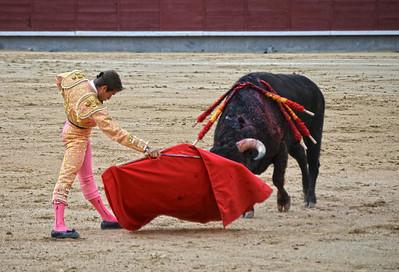 Miguel Ángel León (Novillero -- Novice) and Charging Bull