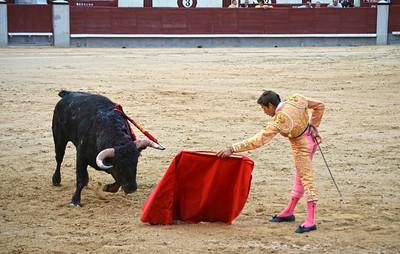 Miguel Ángel León (Novillero -- Novice) Sword Ready