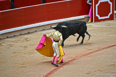 Juan José Padilla Faces the Bull
