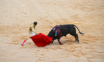 Juan José Padilla Draws the Bull In