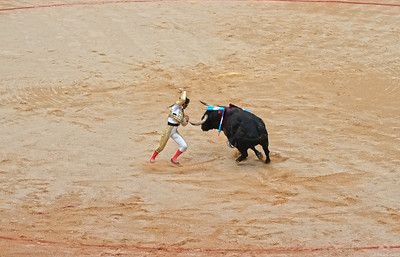 The Bull Closes in on Juan José Padilla