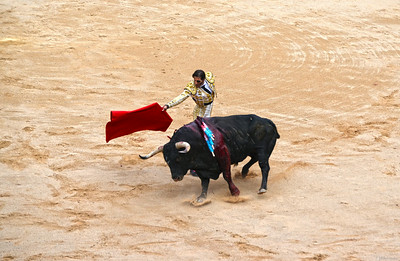 The Bull Sweeps Past Juan José Padilla