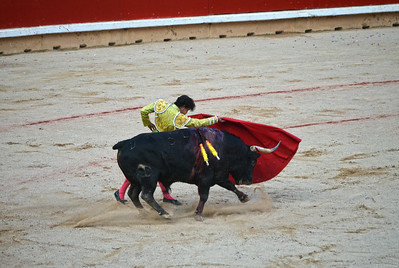 Juan del Álamo at the San Fermín Festival