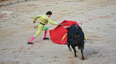 The Bull Charges Forward