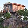 The Tathastu Tree House