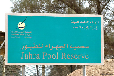 Jahra Pool Reserve