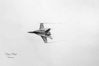Navy F/A-18 Super Hornet