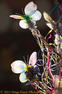 Backlit butterflies