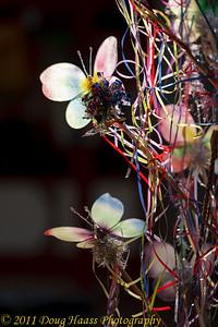 Backlit butterflies 2