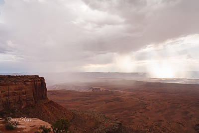 July 10, 2006 near the Green River Overlook in Island of the Sky district of Canyonlands National Park.