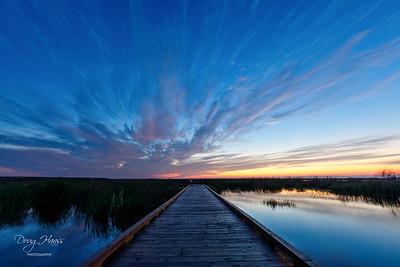 Dawn over Shoveler Pond Boardwalk, Friday morning 12/04/2020.