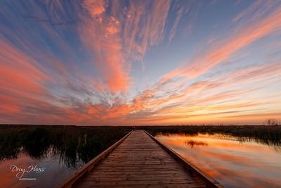 Sunrise over Shoveler Pond Boardwalk, Friday morning 12/04/2020.