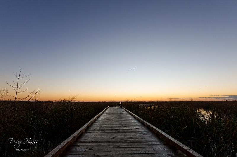 Dawn over Shoveler Pond boardwalk on Sunday morning 12/27/2020.