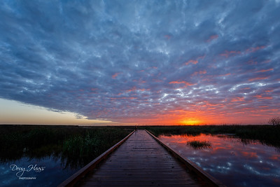 Sunrise over the Shoveler Pond Boardwalk on a 63° Saturday morning 11/21/2020.