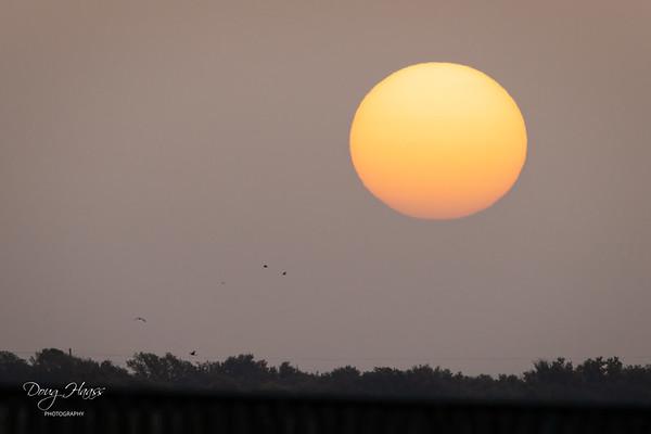 Sunrise over Shoveler Pond Boardwalk, Saturday morning 7/24/2021.