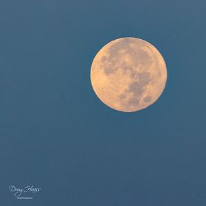 Full moon just before moonset, Saturday morning 7/24/2021.