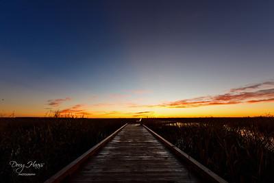 Dawn over Shoveler Pond Boardwalk, Sunday 01/03/2021.