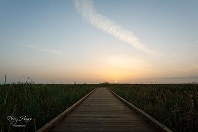 Sunrise over Shoveler Pond, on a 82° Saturday morning 7/24/2021