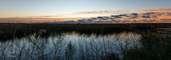 Sunrise over Shoveler Pond, on a chilly 42° New Year's Day morning 01/01/2021.