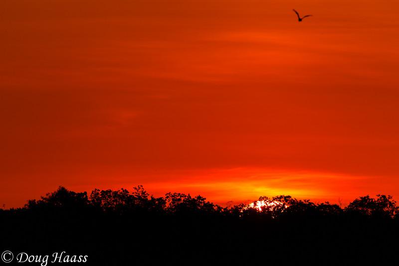 Sunrise Over Pilant Lake