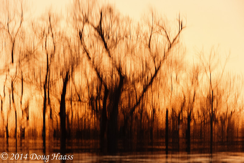 40 Acre Lake Abstract