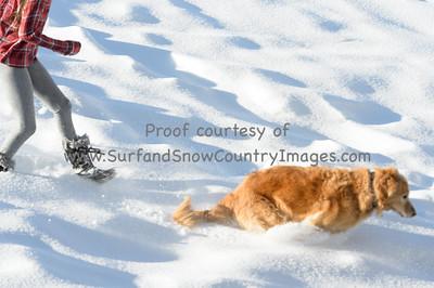 ScottHallenbergPhotography Family 20161211 d7c1-SSH_0084_n0084