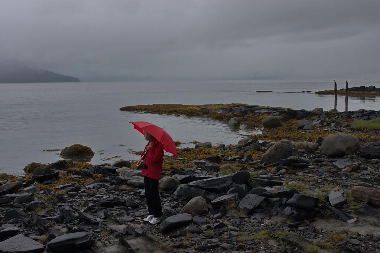 Alaska, Petroglyph Beach State Historic Park, Wrangell