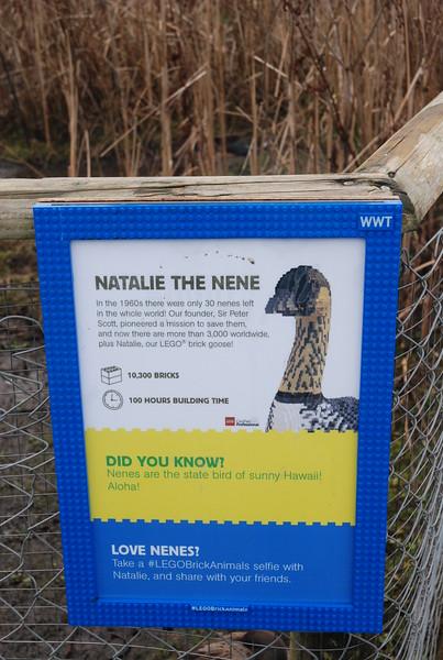 Natalie the Nene