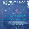Info about the Snowflake