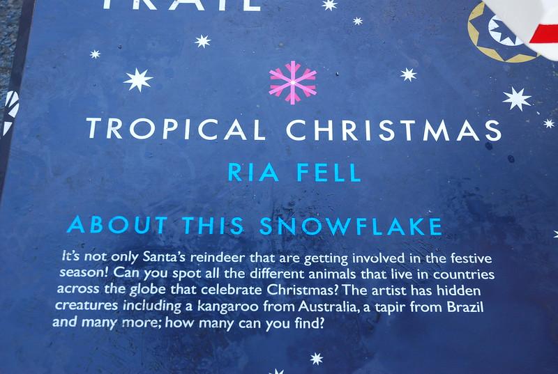 Snowflake Info