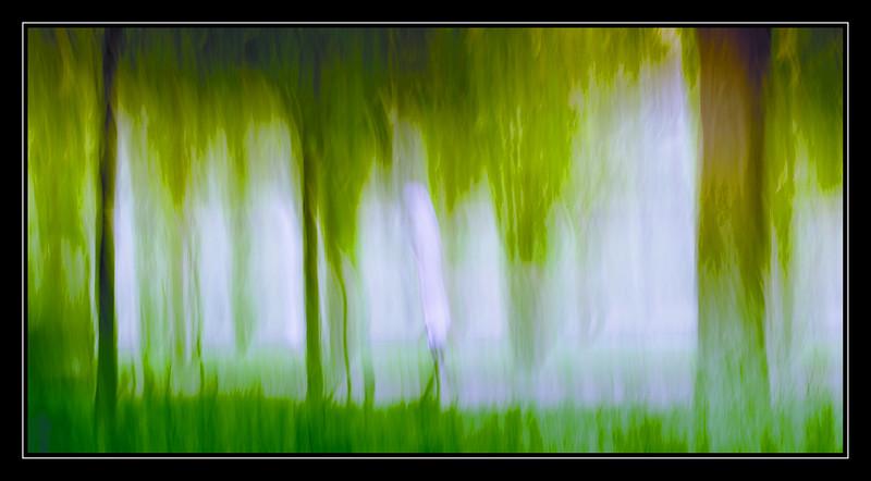filé vertical parc de Sceaux