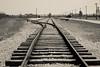 Auschwitz II-Birkenau train line