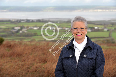 Gower Living...  Jill Burgess on Cefn Bryn