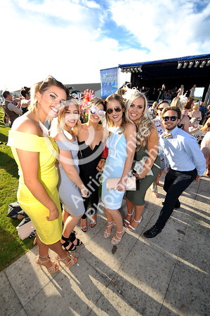 copyright click4prints.com Friday 26th August 2016 Ladies Day, ffos Las Race Course. BYLINE click4prints.com