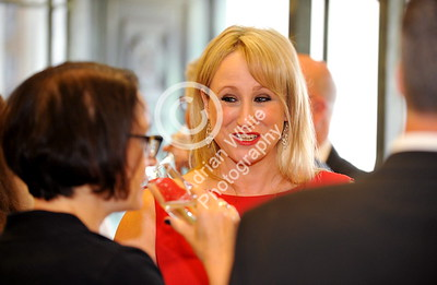 copyright adrian white/  Byline click4prints.com SWANSEA / with story / Friday 29th July 2016 Lord Mayor's Summer Honours Ball BYLINE .. click4prints.com