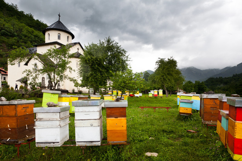 Beehives, Montenegro, Morača monastery (Photo by Alisa)