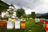 Beehives, Montenegro, Morača monastery (Photo by Alisa)