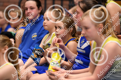 Celtic Dragons netball super league team  Today's Celtic Dragons mascots Bayliss Metals team   Copyright © 2019 by Adrian White  Photography, all rights reserved. For permission to publish - contact me via www.adrianwhitephotography.co.uk Please respect copyright laws.