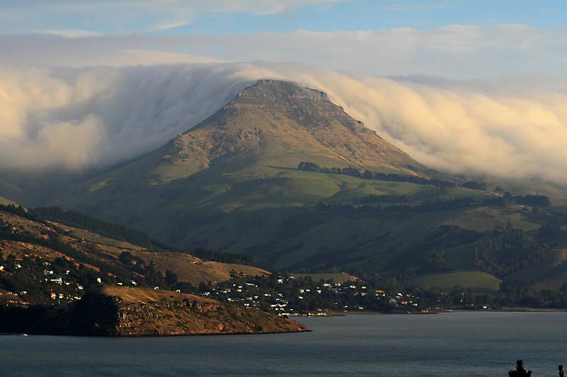 Fog on Mt Bradley, Lyttelton Harbour, Banks Peninsula