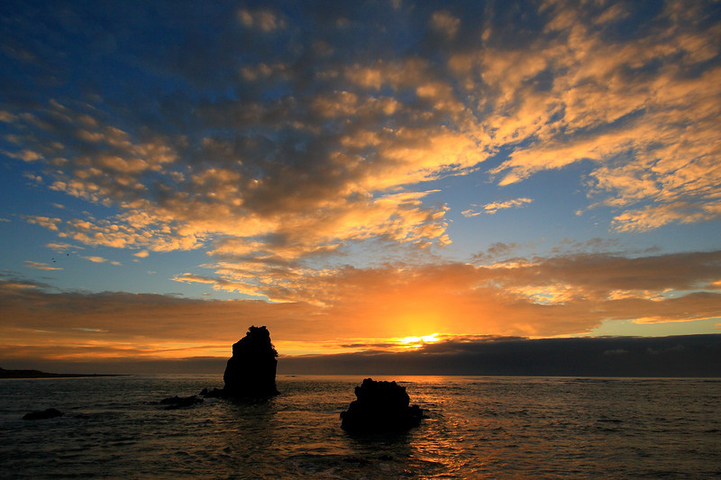 Shag Rock, Sumner, Christchurch