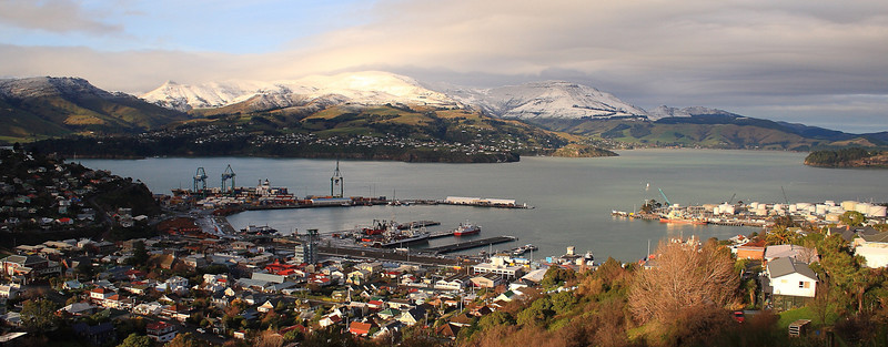 Lyttelton Harbour from Major Hornbrook Track