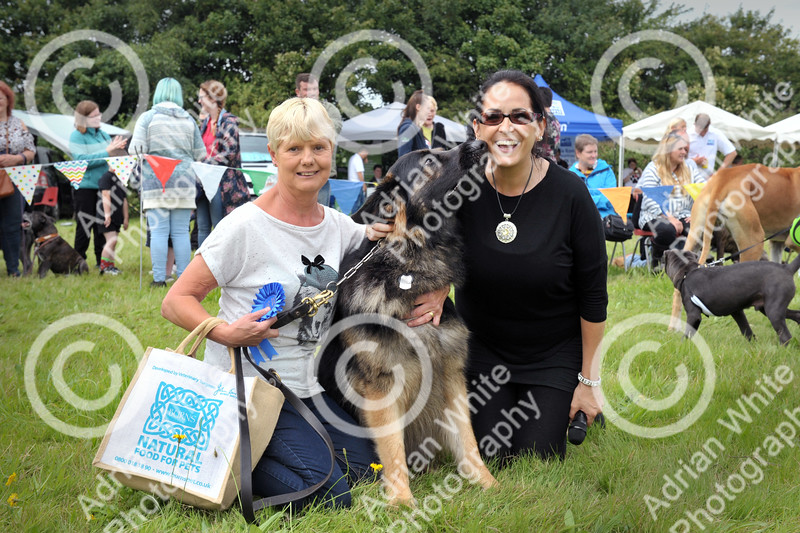 Llys Nini Annual Summer Dog Show in Penllergaer, Swansea ... Winner of the Mr Universe competition 'Storm with owner Marlene Hazel (left) and Helen Enser-Morgan (correct) from Swansea Bay Radio