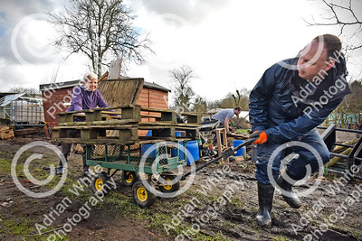 Allotmenteers in Pontypridd begin the clean up of their growing space following the wreckage to the Tin Plate Allotments by the burst banks of the River Taff brought by the rain and floods of Storm Dennis.  Volunteer Lee Price helping allotmenteer Jean Hopkins remove wood pallets from her plot.  Copyright © 2020 by Adrian White  Photography, all rights reserved. For permission to publish - contact me via www.adrianwhitephotography.co.uk Please respect copyright laws.