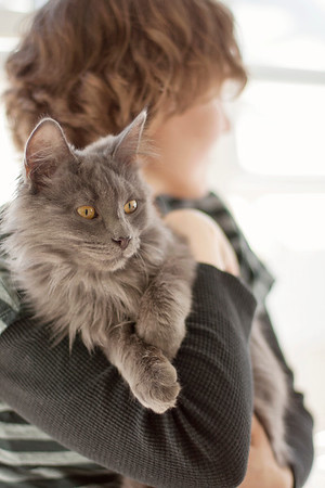 young woman holding grey long haired kitten cat