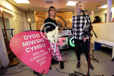 Welsh Music Day