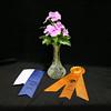Vinca cuttings, Award of Merit