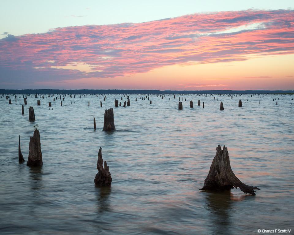 IMAGE: http://www.cscott4.com/Nature/2012-Lake-O-the-Pines-Texas/i-29fHShZ/0/XL/20120831-9921-XL.jpg