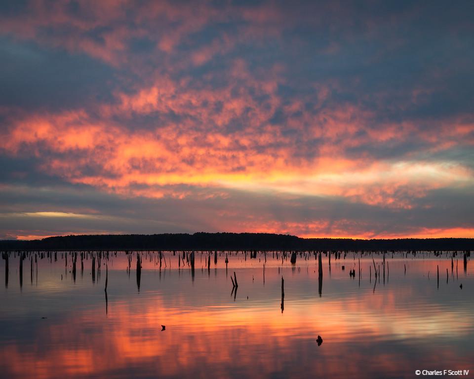 IMAGE: http://www.cscott4.com/Landscapes/2012-Landscape/i-SxqJNnx/0/XL/20121113-3962-XL.jpg