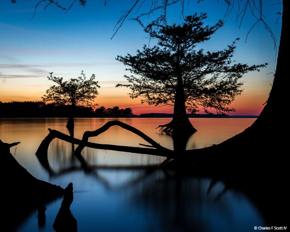 IMAGE: http://www.cscott4.com/Landscapes/2012-Landscape/i-Zj73VRn/0/XL/20120406-7720-XL.jpg