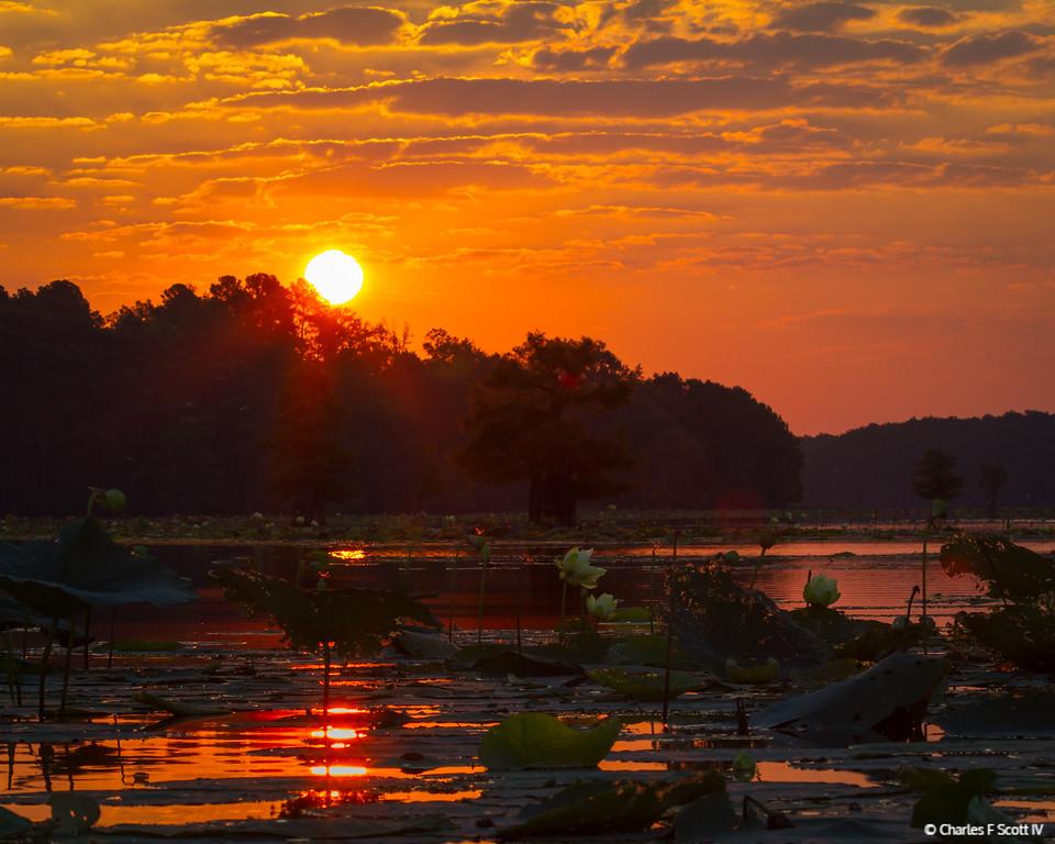 IMAGE: http://www.cscott4.com/Landscapes/2013-Landscape/i-jq7FtLx/0/XL/20130905-2258-XL.jpg